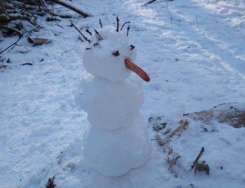 I Duchenni mají své sněhuláky